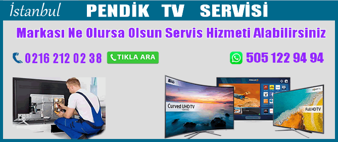 Pendik Tv Servisi