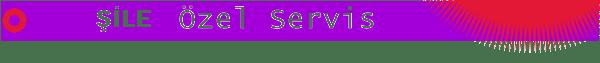 Şile Digitürk Servisi